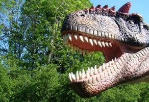 Park Dinozaurów i Ogromnych Owadów rabat