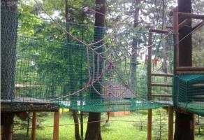 Park Linowy Spider Park rabat