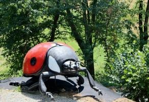Parkus Gigantus w Wapowcach rabat