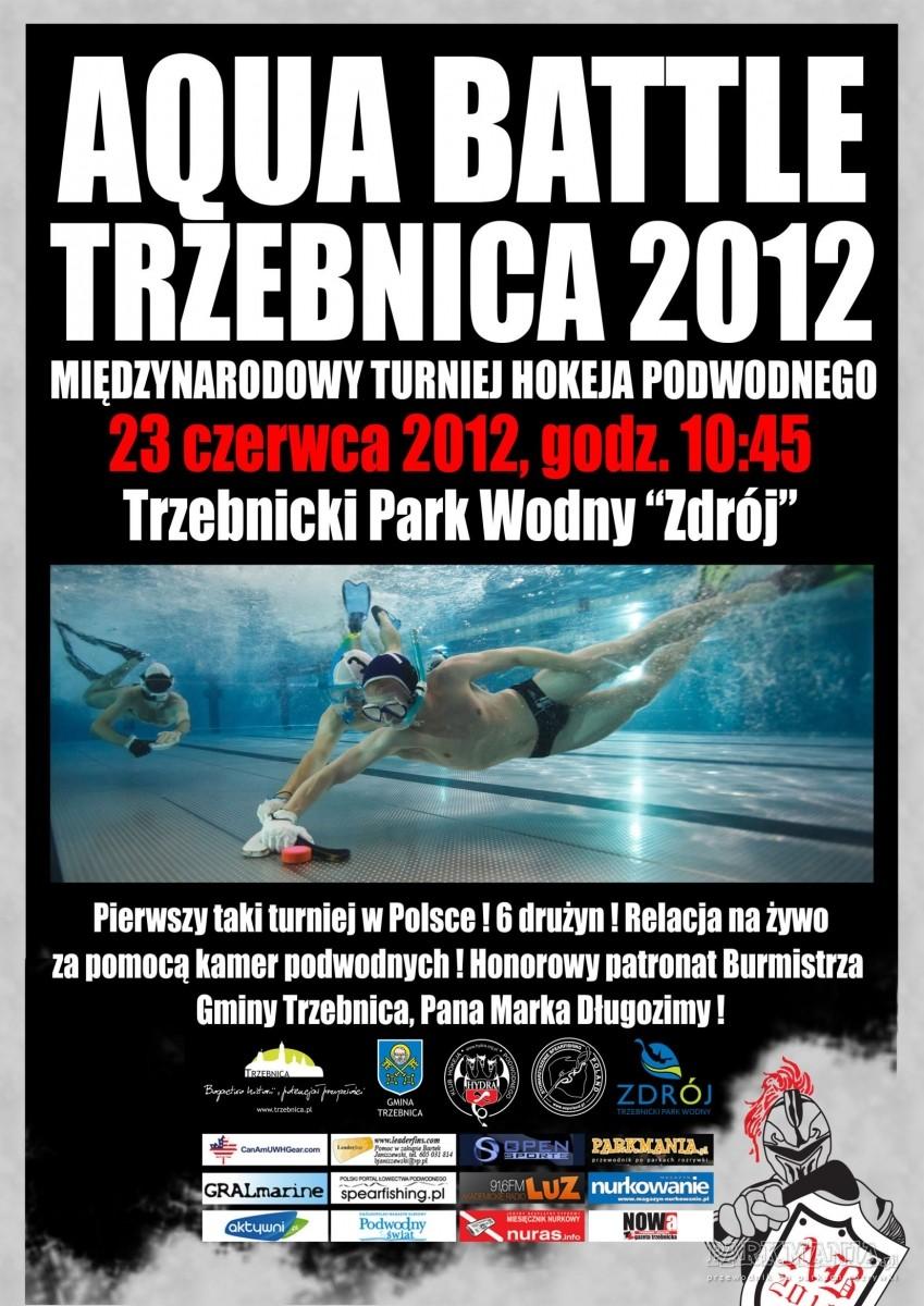 W Trzebnicy odbędzie się pierwszy w Polsce turniej hokeja podwodnego