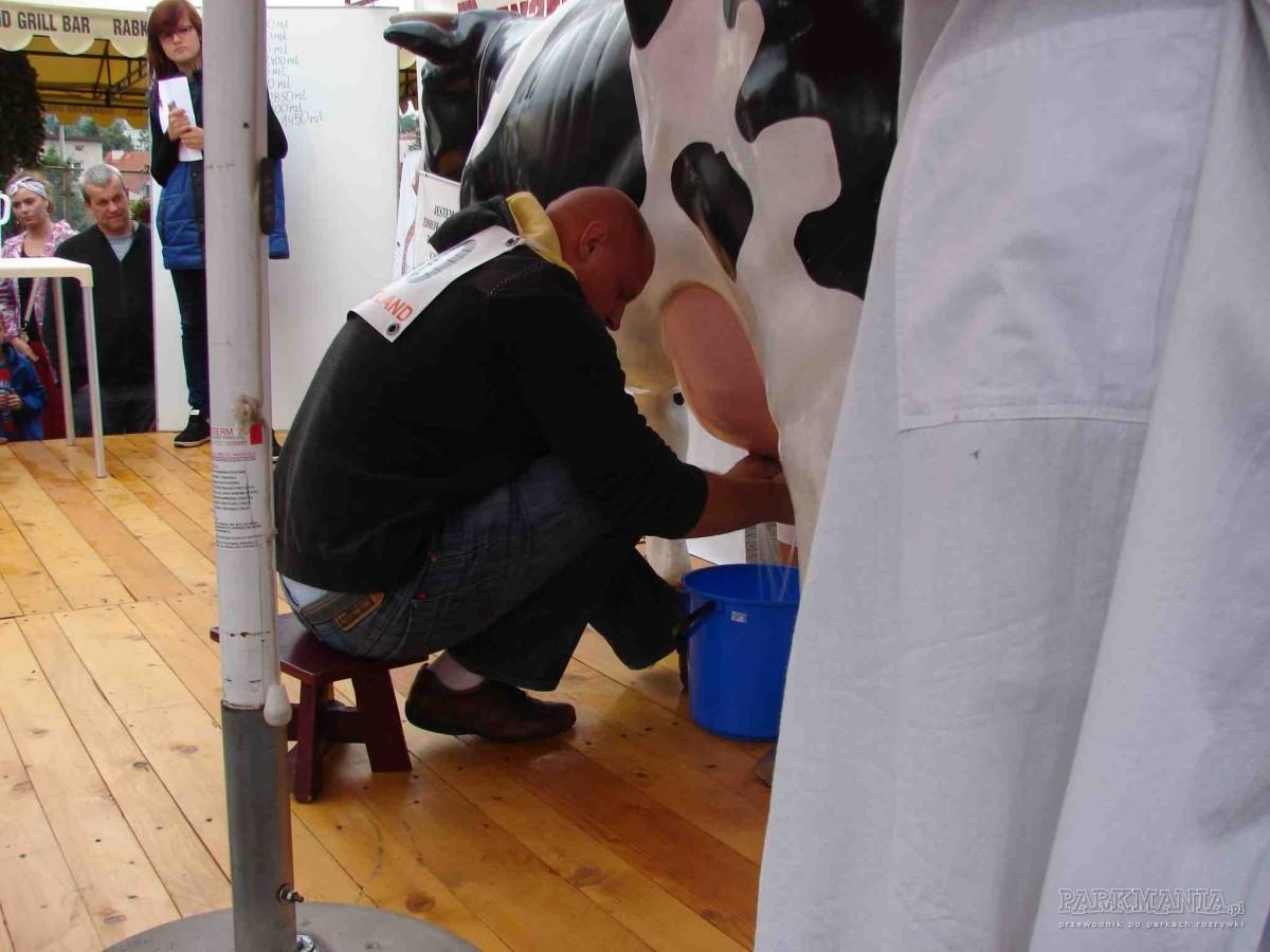 [AKTUALIZACJA] XIII Mistrzostwa w dojeniu sztucznej krowy w Rabkolandzie