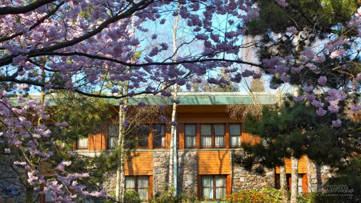 Disney's Sequoia Lodge – w nawiązaniu do amerykańskiej przyrody