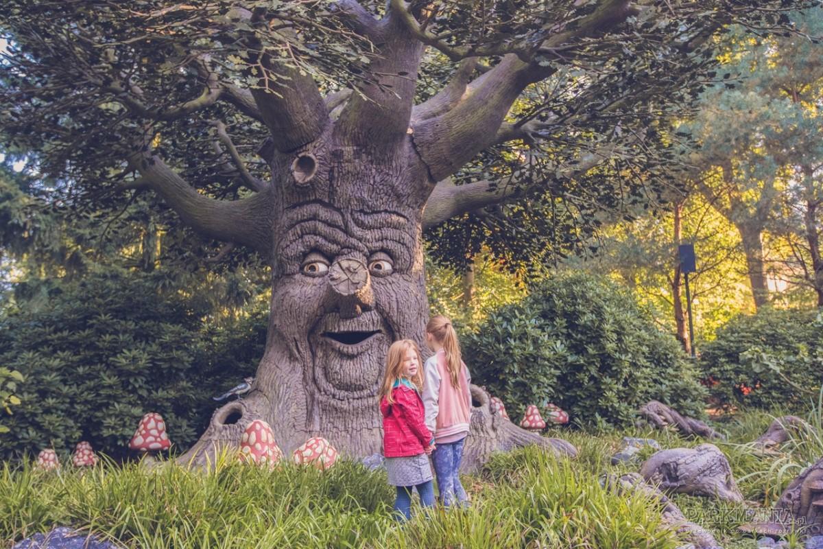 Wybierasz się do Holandii? Koniecznie dopisz Efteling do programu wycieczki!