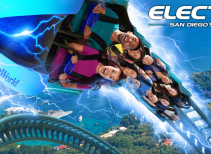 Electric Eel Roller Coaster