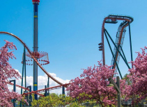 Yukon Striker
